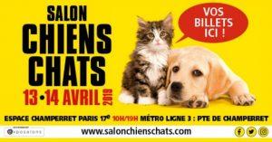 Salon chiens et chats 2019