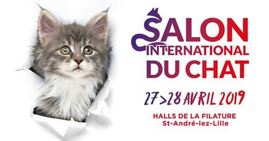 Salon international du chat 2019