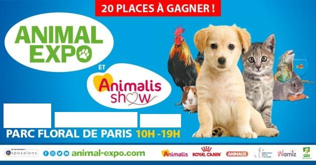 Animal expo 2020