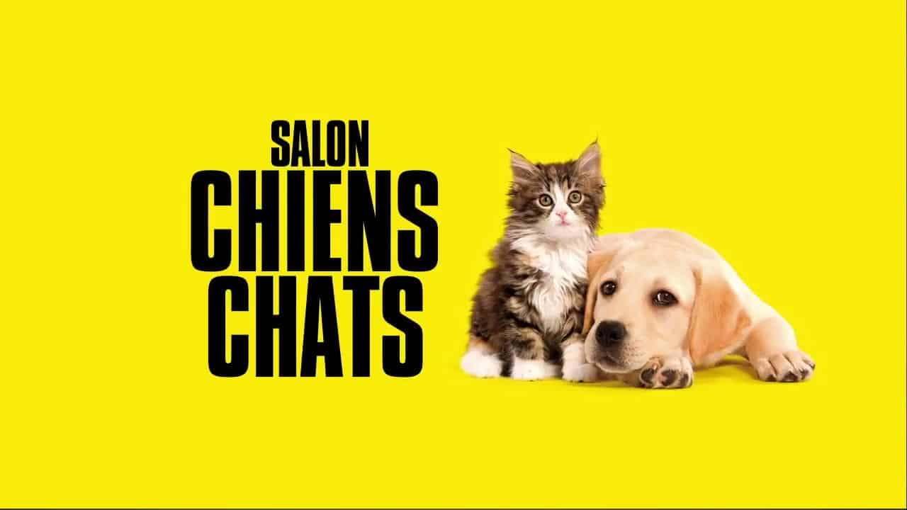 Salon Chiens & Chats 2020