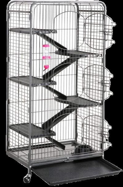 grande-cage-ecureuil-de-coree